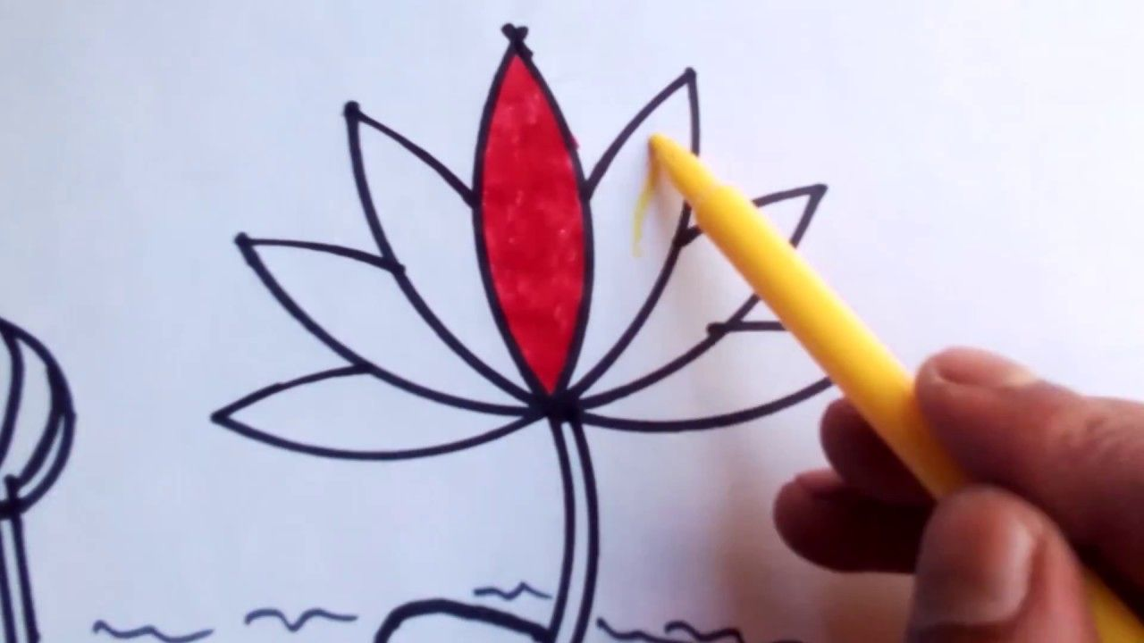 How to draw water lily step by step very easy how to drawing how to draw water lily step by step very easy izmirmasajfo
