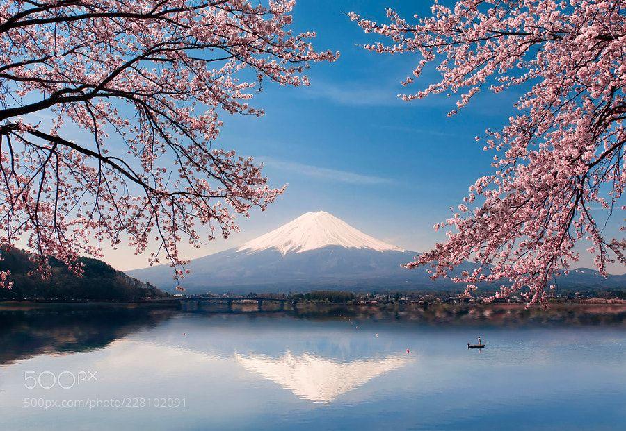 Photo Groups Spring Landscape Mount Fuji Japanese Landscape