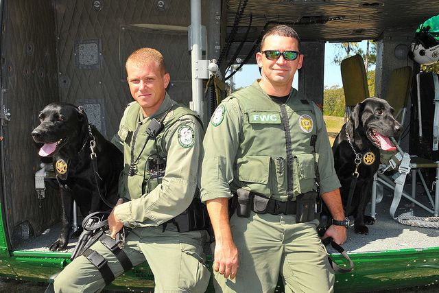 K9 Officers Military Working Dogs K9 Officer Real Life Heros