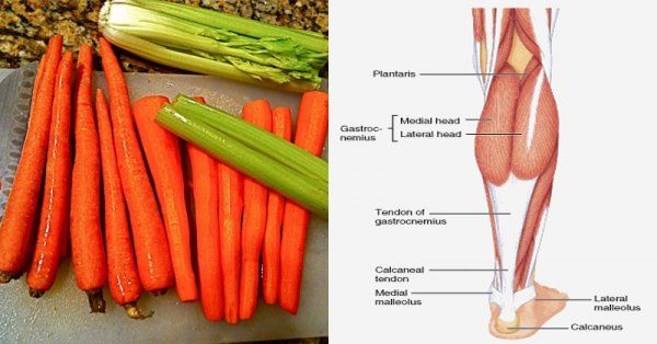 These Vitamins Prevent Muscle Cramps Before They Happen ...
