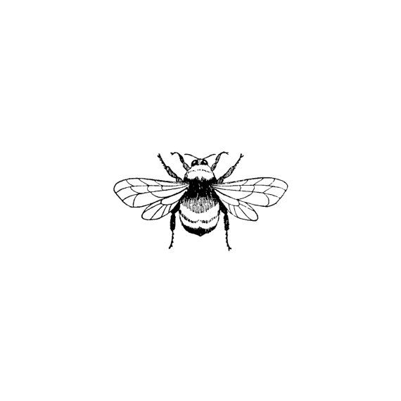 Photo of Full Bee 272D Beeswax Rubber Stamps Unmounted, Cling, Mounted Stamp Animal, Wildlife, Nature Stamping