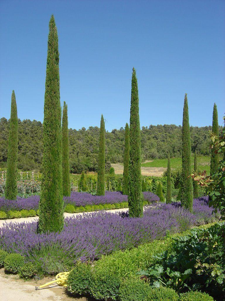 Jardins du ch teau val joanis pertuis les jardins for Les jardins