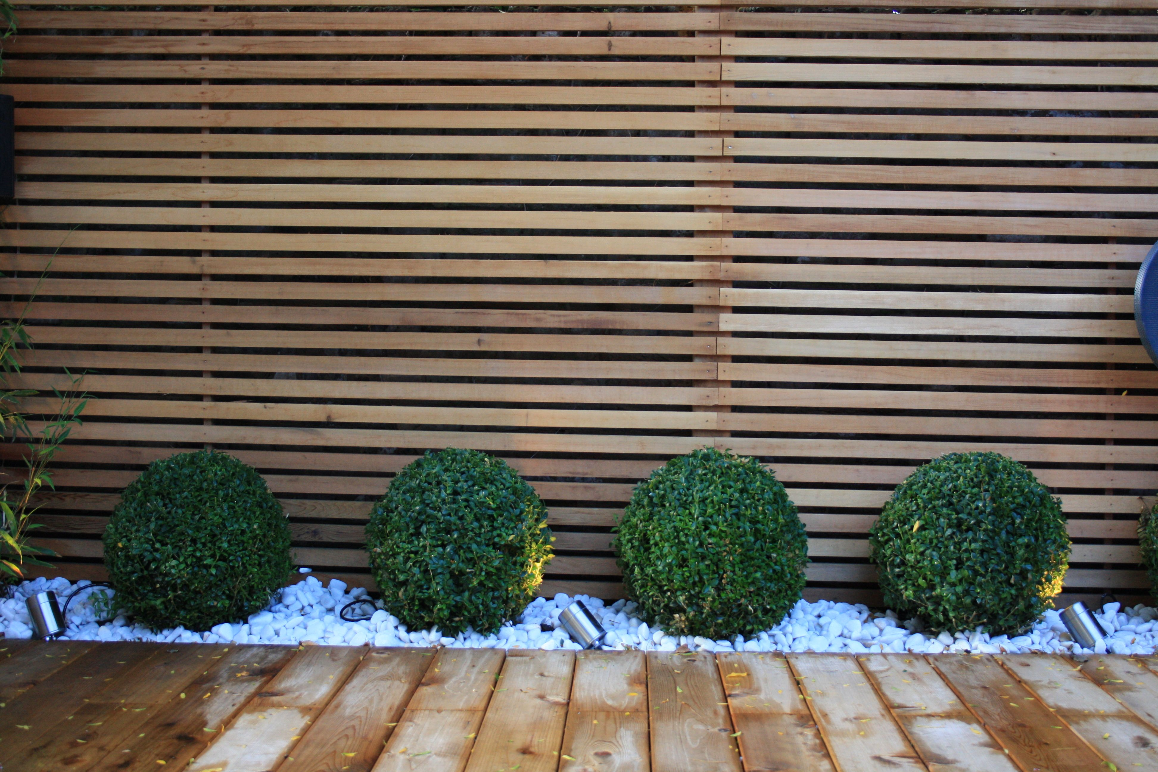 Garden Design Ideas For Small Spaces Lavender And Box Balls In A Gravel Bed Front Garden Design Contemporary Garden Design Small Gardens