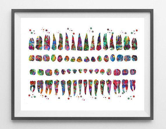Teeth Diagram Watercolor Print Dental Art Poster Anatomy Art