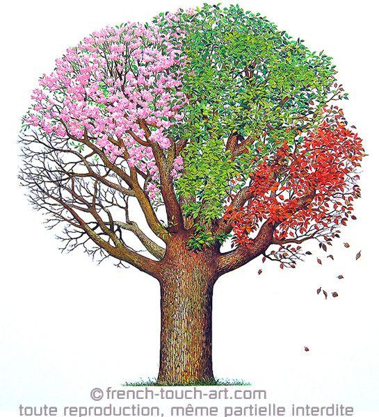 Arbre quatre saisons arbres les saisons dessin et bricolage - Dessin 4 saisons ...