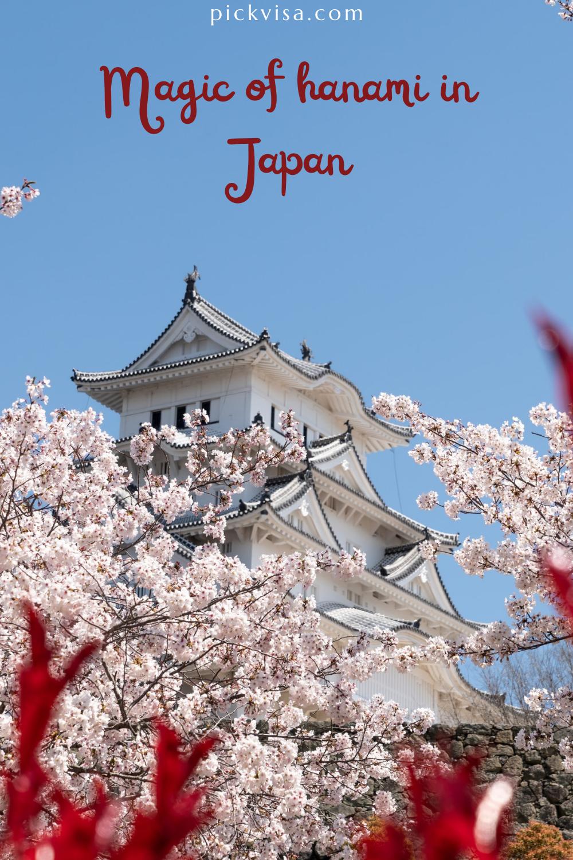 Magic Of Hanami In Japan In 2021 Hanami Japan Spring Mood
