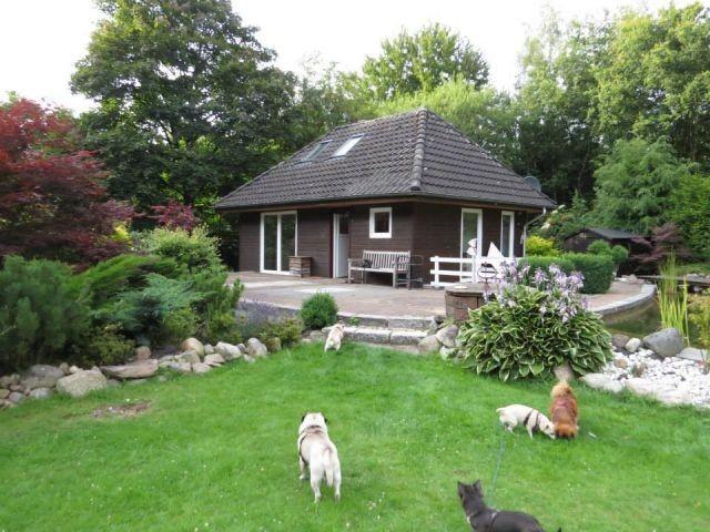 Kleines Hundefreundliches Ferienhaus Im Wald In Wulsbuttel Nordsee 2 3 Personen 6 Hunde In 2020 Ferienhaus Im Wald Ferienhaus Nordsee Mit Hund Ferienhaus Nordsee