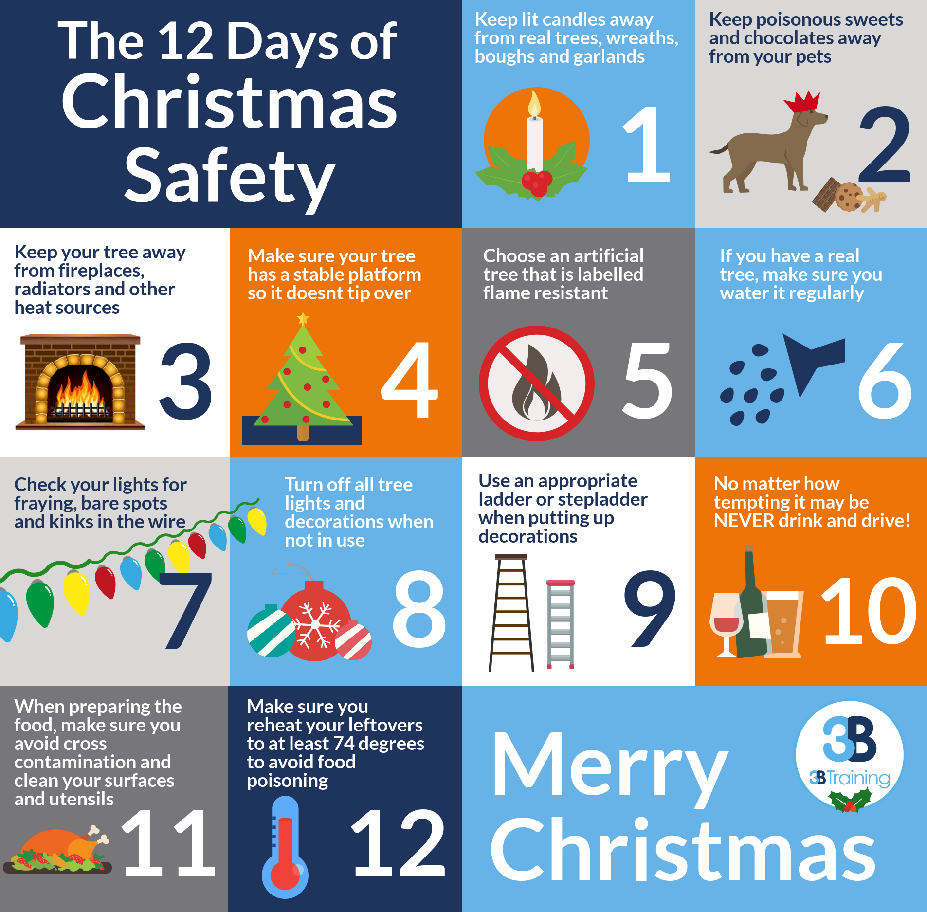 On the 12 Days of Christmas, my true love gave to me… 12