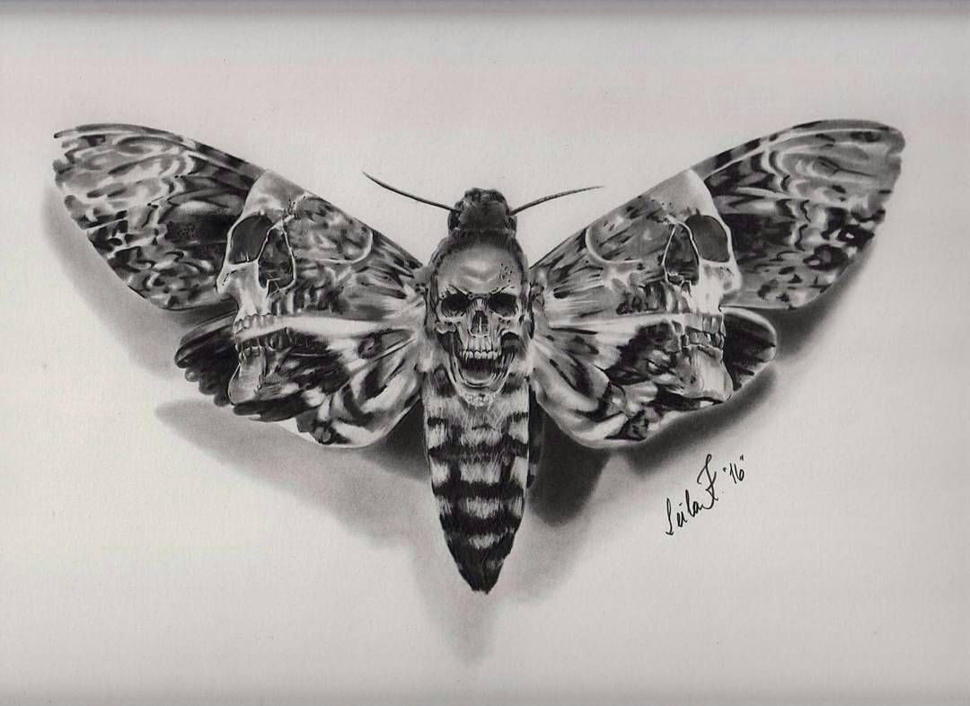 Aucune Description De Photo Disponible Moth Tattoo Death Head Moth Tattoo Death Moth Tattoo
