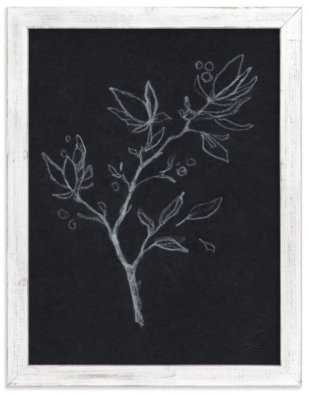 Black & White Botanical No.2 Marketplace Non-Custom Art