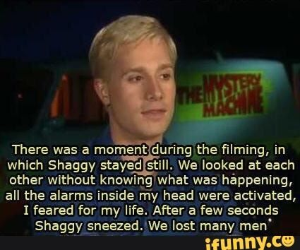 Picture memes nOs3qzo17 — iFunny There was a moment durifig ming, in which Shaggy stayed still. We looked at each other without knowing what was háppeníng, all the alarms inside my head were activated, 1 feared for my life. Afier a few seconds Shaggy ;neezed.'We lost many men' – popular memes on the site