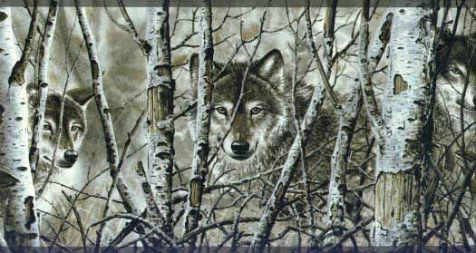 The Winter Wolf Wallpaper Border Wolf wallpaper