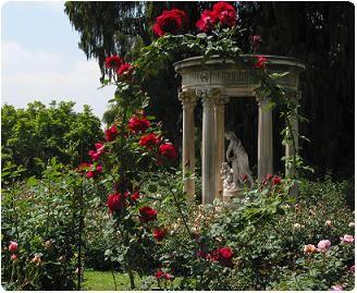 The Hidden Rose Garden Operation Force Blueblackrose To Become More Active Will We Succeed Beautiful Gardens Garden Architecture Dream Garden