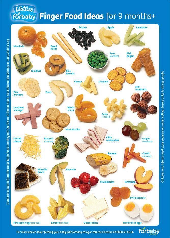 BLW Finger Food Ideas For Babies 9 Months