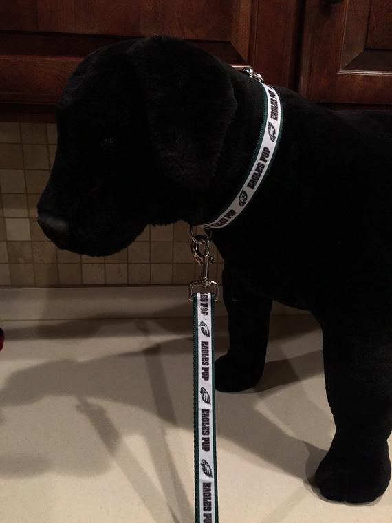52817f599 Philadelphia Eagles Pup Football Sports Dog Collar/Matching Leash (ALL  SIZES)