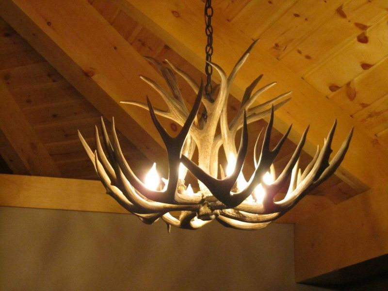 Why do i love antler chandeliers so much real antler mule deer why do i love antler chandeliers so much real antler mule deer chandelier on mozeypictures Images