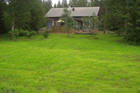 Toisena kesänä kylvöstä nurmikko kasvaa jo voimalla - paikoin vielä pilkottaa paljas maa.