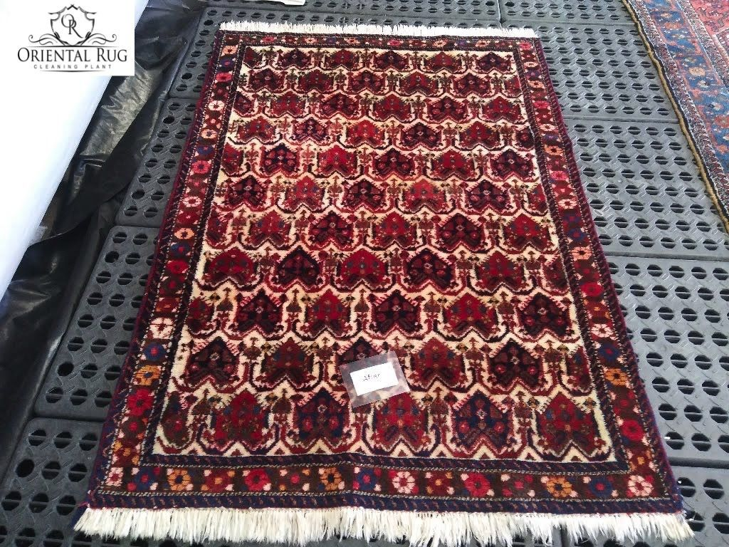 Our Full Immersion Rug Washing Process Is Safe Effective For Virtually Every Type Of Rug Which Means Yes We D In 2020 Rug Cleaning Services Area Rugs Types Of Rugs