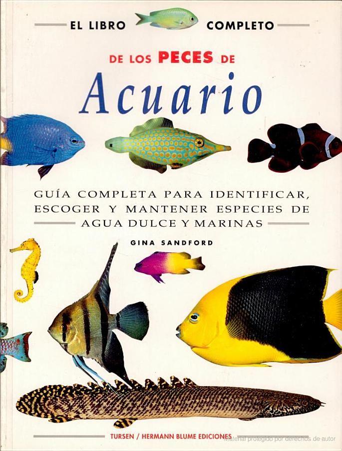 M s de 25 ideas nicas sobre peces para acuario en for Peces para criar