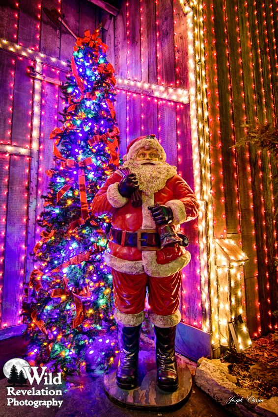 Santa Claus stands beside a beautiful Christmas tree at Silver