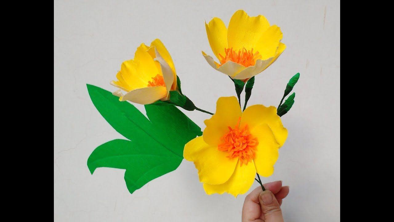 Howto Make Paper Flowers Buttercup Tree Cochlospermum Religosum