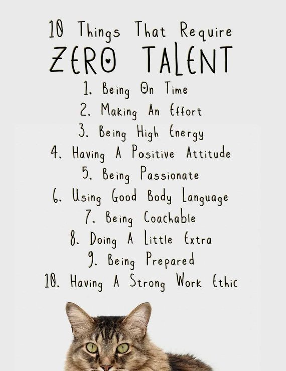 10 Things That Require Zero Talent Inspirational Cat Print