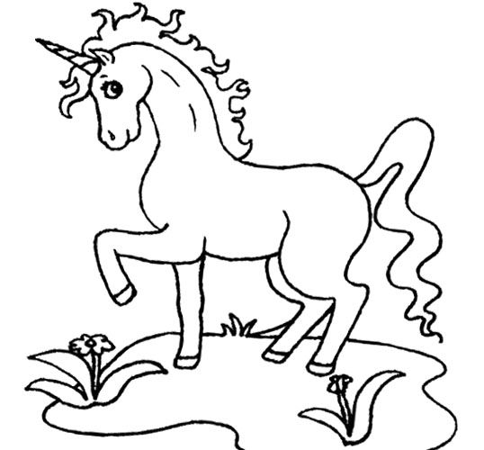 beautiful unicorn coloring page