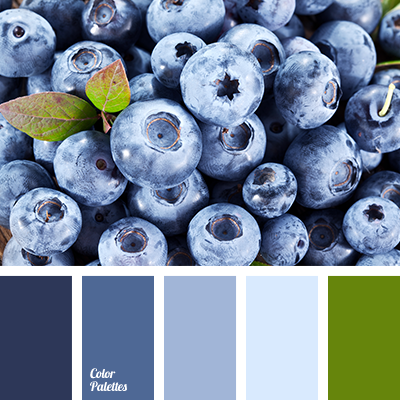 blackberries color, blue-color, blueberries color, bright blue, dark-blue, decor color scheme, deep blue, green color, living room color matching, midnight blue, pale blue, pastel colors matching, violet-blue.