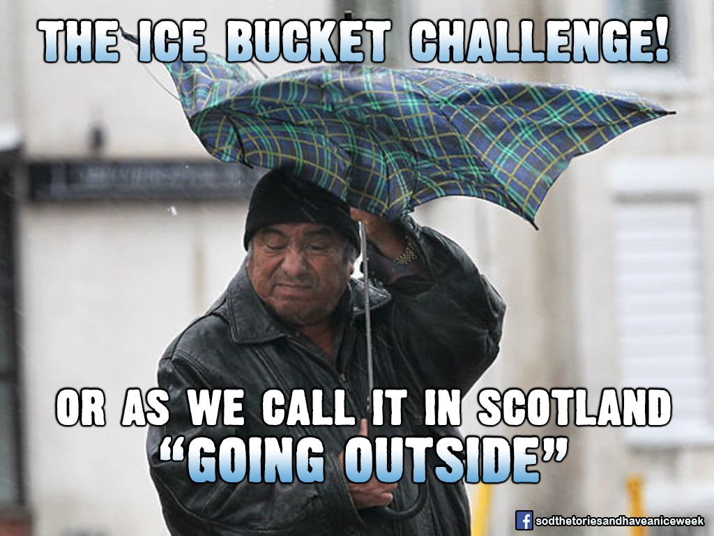 6b0765811e022c8de2d935c42e03f32d scottish meme google search cool internet commentry