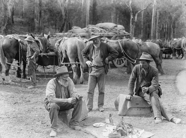 Meal break for teamsters and horses by Powerhouse Museum Collection, via Flickr