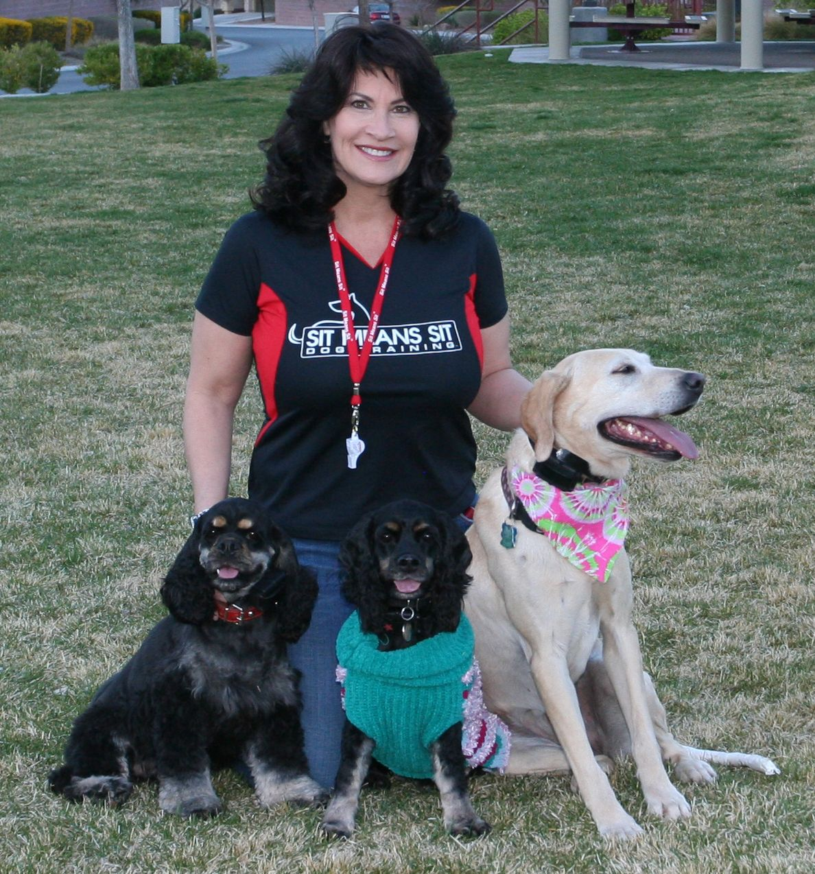 Sonny Madsen S Pack Professional Dog Training Dog Training Dog