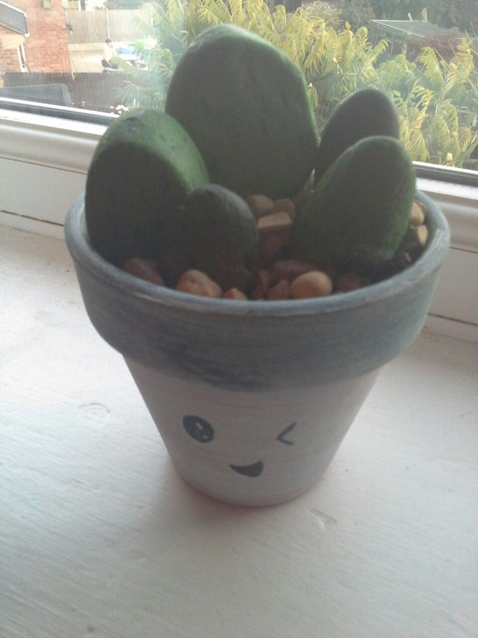 Cactus stone DIY Made from: Stones Marker pen Teracotta pot