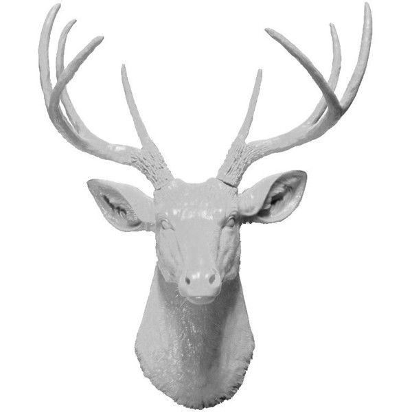 White Deer Head Bust Wall Hanging, 8 Point Deer Head Mount ($70) ❤ liked on Polyvore featuring home, home decor, antler home decor, deer home decor, white home accessories, white home decor and deer head statue