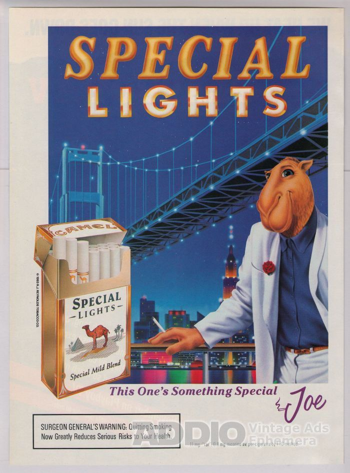 Smoking Camel Porn