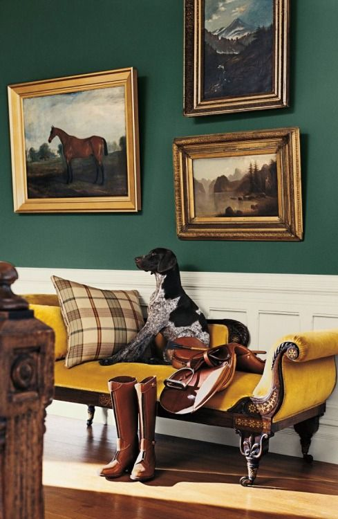 Gorgeous hound on an antique settee