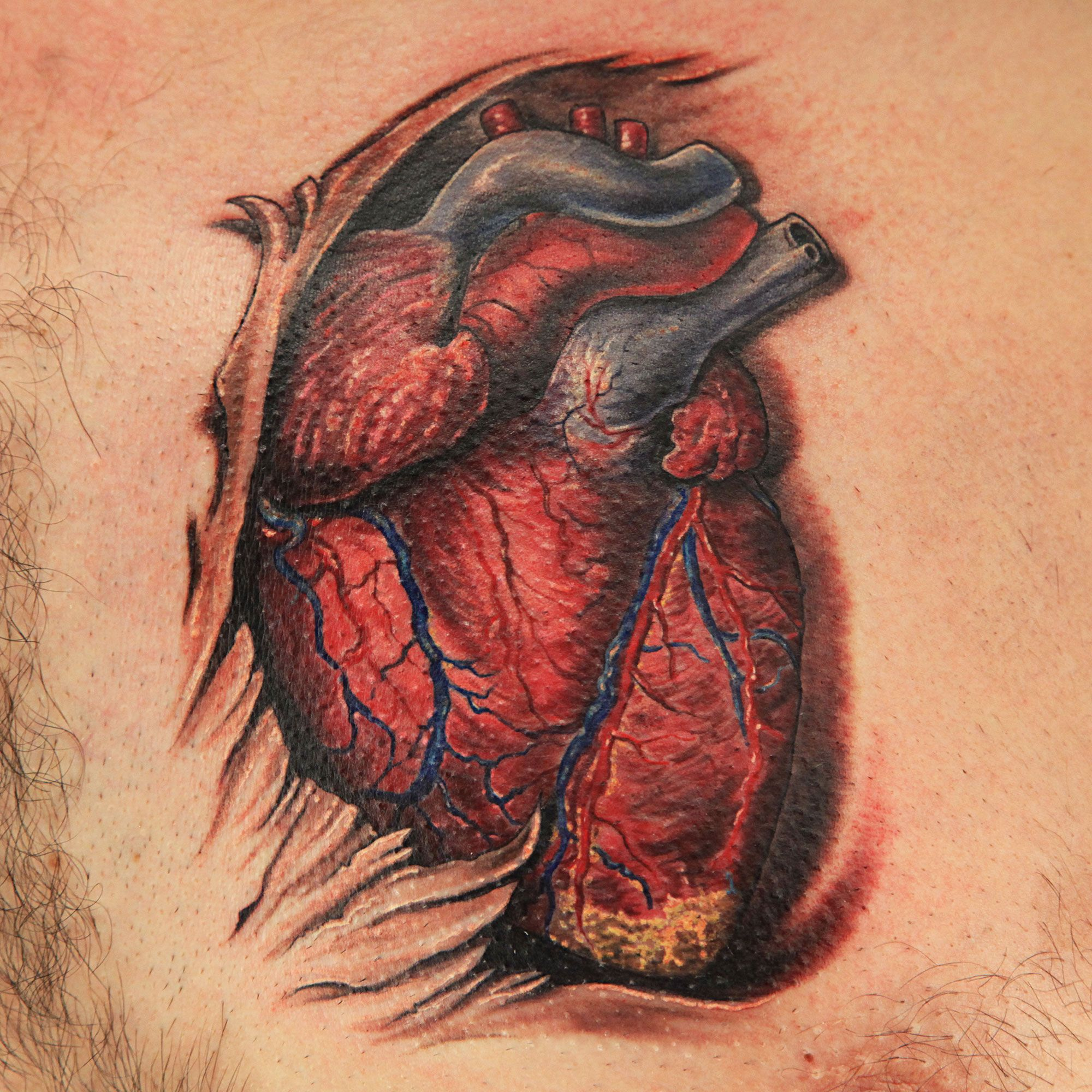 Realistic Medical Anatomical Tattoo by Joey Hamilton