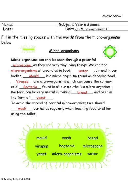 PrimaryLeap.co.uk - Micro-organisms Worksheet | Year 6 - Science ...