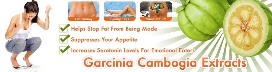 Zumba lose weight stories