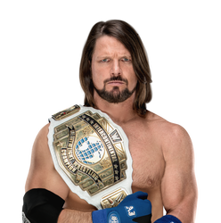 Pin On All Wwe Champion S