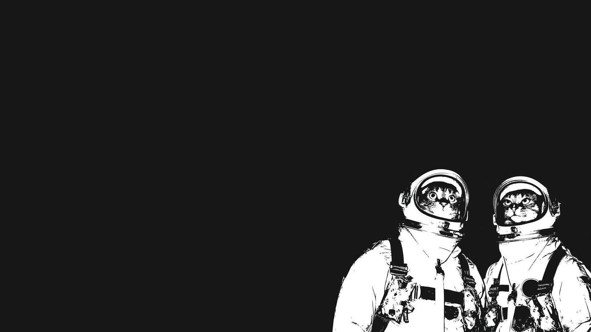 minimalistic cats funny astronauts - Wallpaper (#2775511 ...