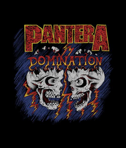 Pantera Domination Skulls T Shirt Graphic Tees For Men Women Pantera Band Rock Band Logos Metal Music Bands