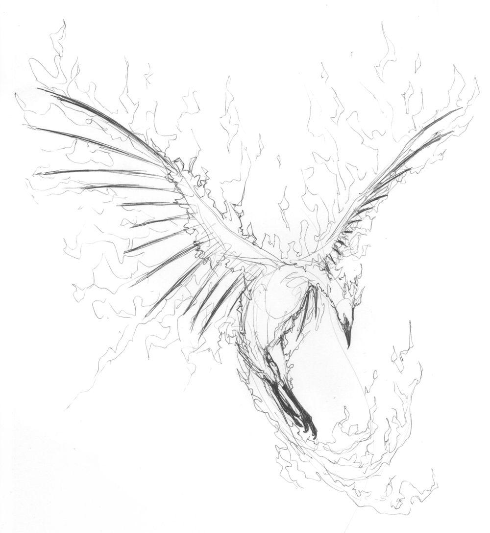 блогер картинка феникс карандашом подаче оформите