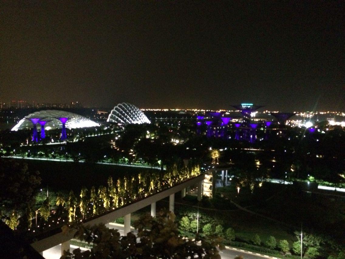 마리나배이센즈에서 본 싱가폴야경