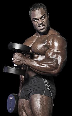 Muscle Man Muscle Men Body Builder Man