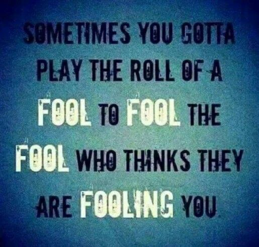 Fool Quotes Clever  Words  Pinterest  Wisdom Place Quotes And Truths
