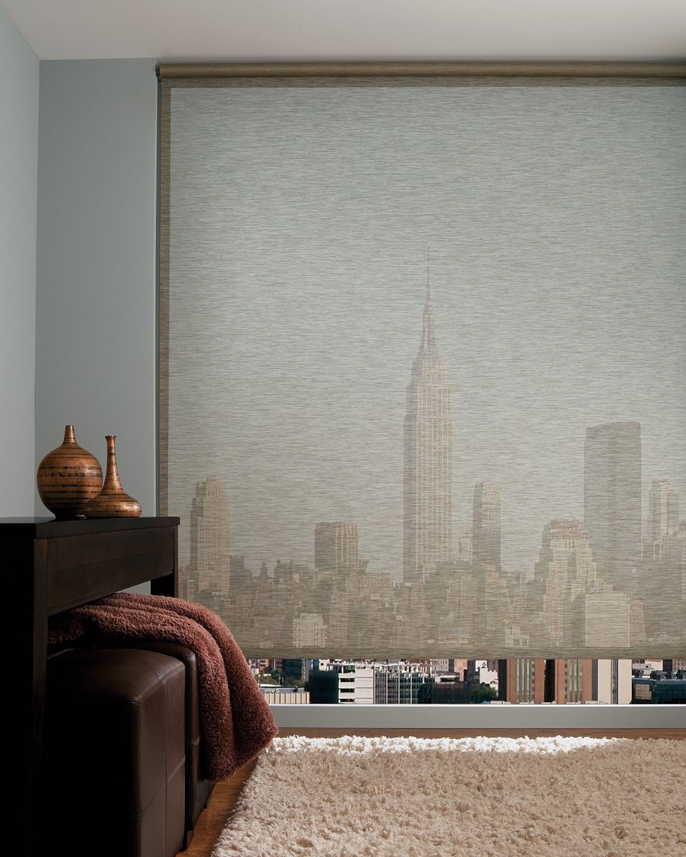 Hospitality and hotel window treatments sheer shades solar screen - Hunter Douglas Designer Screen Roller Shades From Decorview Gorgeous Window Treatments For Modern Or Contemportary