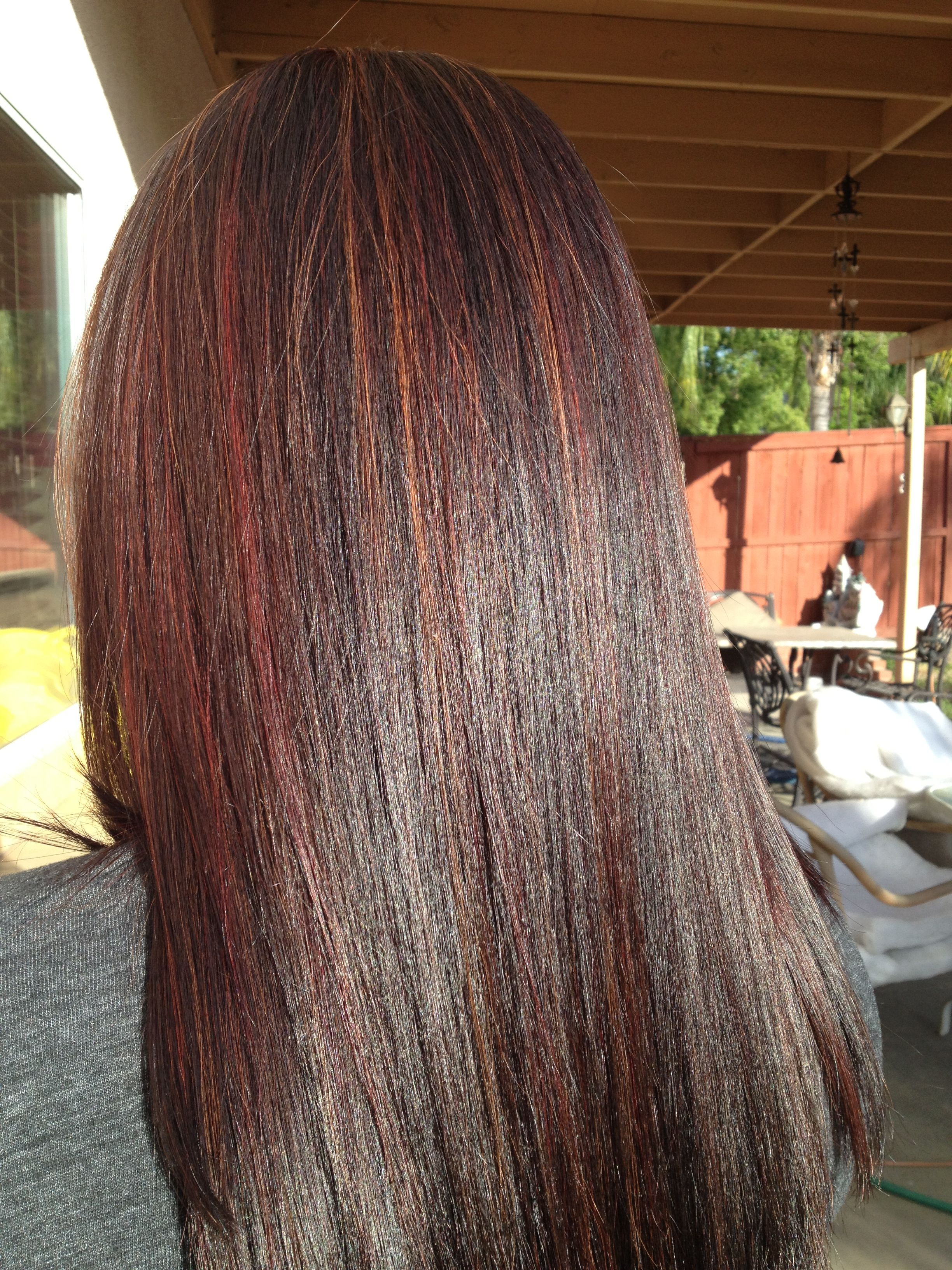 Brunette Caramel Highlights Red Highlights And The Brazilian