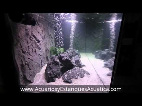Juwel Stone Granite Fondo 3d Acuarios Fondo Acuario Acuarios Accesorios Para Peceras