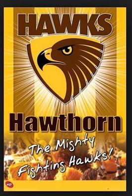 2015 Afl Grand Final Winners Hawthorn Football Club With Images Hawthorn Football Club Hawthorn Football