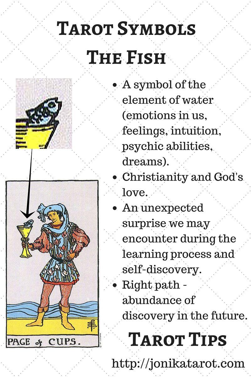 Symbols In Tarot Pinterest Tarot Symbols And Tarot Cards